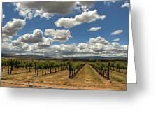 Livermore Vineyard Greeting Card