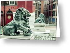 Liverpool Chinatown - Chinese Lion D Greeting Card