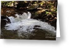 Living Streams Greeting Card