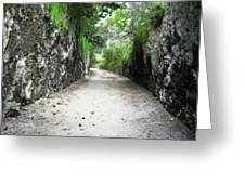 Living Walls Greeting Card