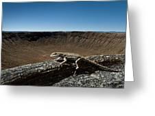 Lizard Crater Greeting Card
