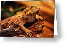 Lizard - Id 16217-202744-5164 Greeting Card