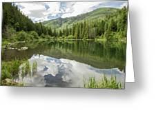 Lizard Lake Reflections Greeting Card