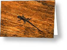 Lizard On Sandstone Greeting Card
