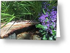 Lizards In The Garden Greeting Card