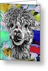 Llama And Lady In Splash Greeting Card
