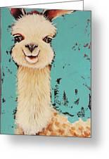 Llama Sid Greeting Card