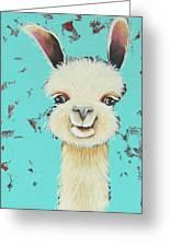 Llama Sue Greeting Card