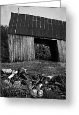 lloyd-shanks-barn-2BW Greeting Card