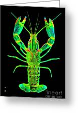 Lobster Crawfish In The Dark - Greenlime Greeting Card