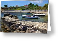 Local Boats In Harbour Greeting Card