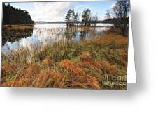 Loch Garten Greeting Card