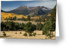 Lockett Meadow Autumn Greeting Card