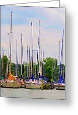 Lockley Marina Greeting Card