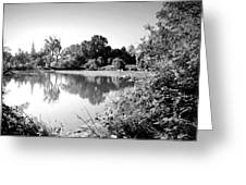 Lodi Pig Lake Reflections B And W Greeting Card