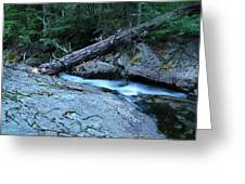 Log Over Deep Creek Greeting Card