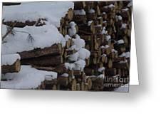 Log Row Greeting Card