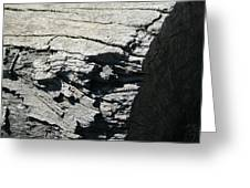 Log Side Greeting Card