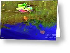 Loggerhead Sea Turtle In The Florida Everglades Greeting Card