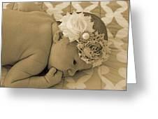 Lola Eve 4 Greeting Card by Regina McLeroy