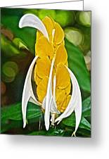 Lollipop Flower In Bourbon Resort Gardens Near Iguazu Falls National Park-brazil  Greeting Card