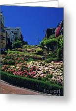 Lombard Street  Greeting Card