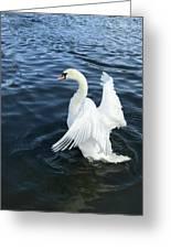 London Swan Greeting Card