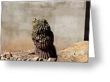 Lone Cactus In Sepia Tone Greeting Card