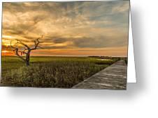 Lone Cedar Dock Sunset - Dewees Island Greeting Card