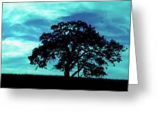 Lone Oak Greeting Card