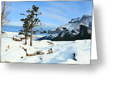 Lone Pines On Lakeshore Greeting Card
