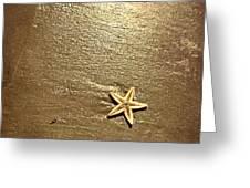 Lone Starfish On The Beach Greeting Card