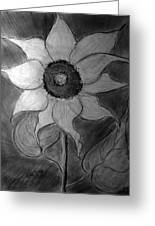 Lone Sunflower Iv Greeting Card