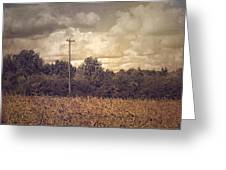 Lone Telephone Pole In Autumn Field Greeting Card
