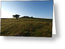 Lone Tree, Dartmoor Greeting Card