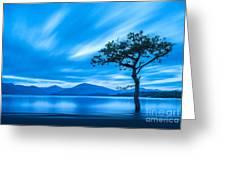 Lone Tree Milarrochy Bay Greeting Card