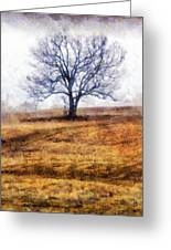 Lone Tree On Hill In Winter Greeting Card
