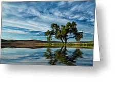 Lone Tree Pond Reflection Greeting Card