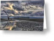 Lone Tree Under Moody Skies Greeting Card
