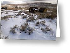 Lonely Bodie Greeting Card