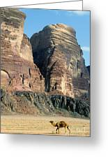 Lonely Camel In The Desert Of Wadi Rum Greeting Card by Sami Sarkis