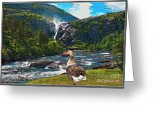 Lonely Near The Waterfall 1 Greeting Card