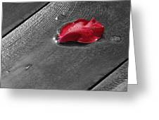 Lonely Petal Greeting Card