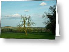 Lonely Tree Cotswold England Greeting Card