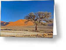 Lonely Tree In Sossusvlei Greeting Card