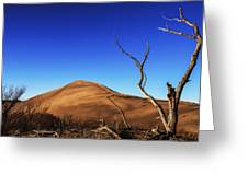 Lonely Bare Tree And Sanddunes Greeting Card