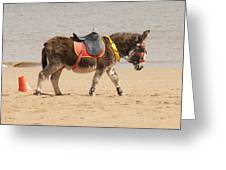 Lonesome Donkey Greeting Card