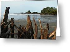 Long Beach, Tofino Greeting Card