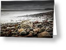 Long Exposure At Lawrencetown Beach, Nova Scotia Greeting Card