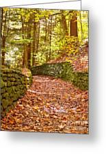 Long Fall Walk  Greeting Card